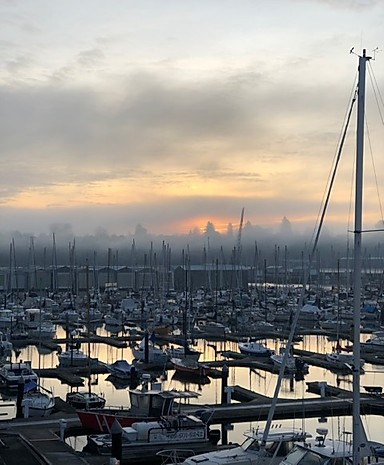 Our Everett Yacht Club view for the evening.